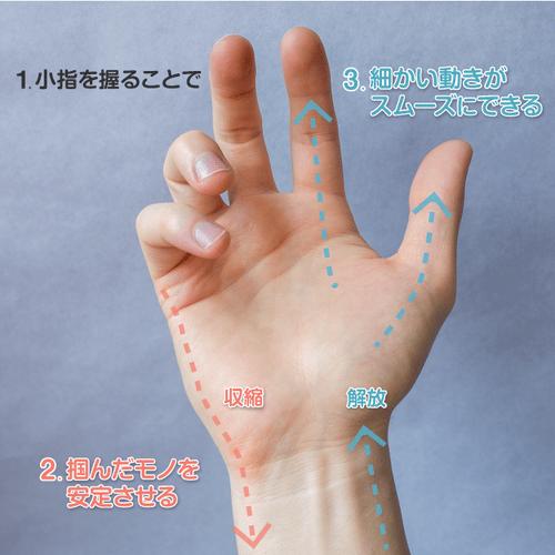 図解 [小指を握ることで小指球が収縮し、細かい作業がスムーズにできる]