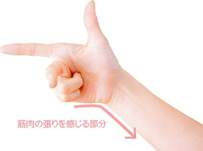小指を曲げたとき筋肉が張る部分