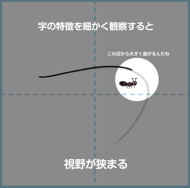 図解 [直接視野(アリの目)の特徴]