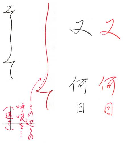 パイロットペン習字の添削ポイント「線のリズム感を意識する」