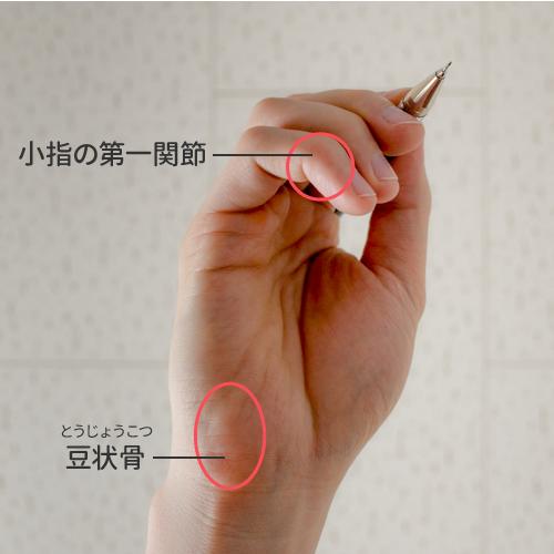 大きな赤丸部分が小指球